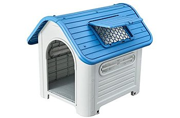 10 Best House Dogs Reviews
