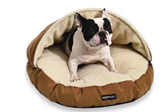 Top 10 Best Portable Indoor Dog House